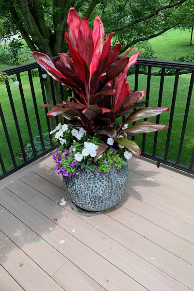outdoor-potted-floral-arrangement-image-sandys-back-porch