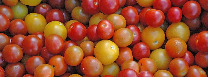sandys-back-porch-image-heirloom-tomatoes