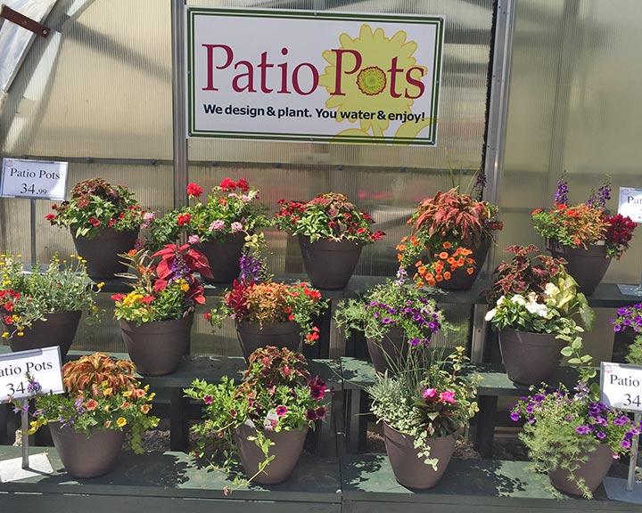 sandys-back-porch-image-of-patio-pots