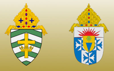 Diocesan Policy: Advocacy, Lobbying and Political Action