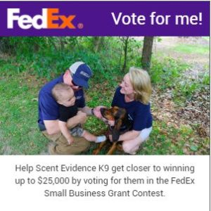 FedEx Small Business Contest Voting Badge