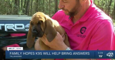Scent Evidence K9 in Tallahassee Gets new Recruits