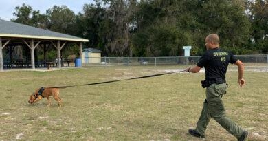 Sumter County Bloodhound Team