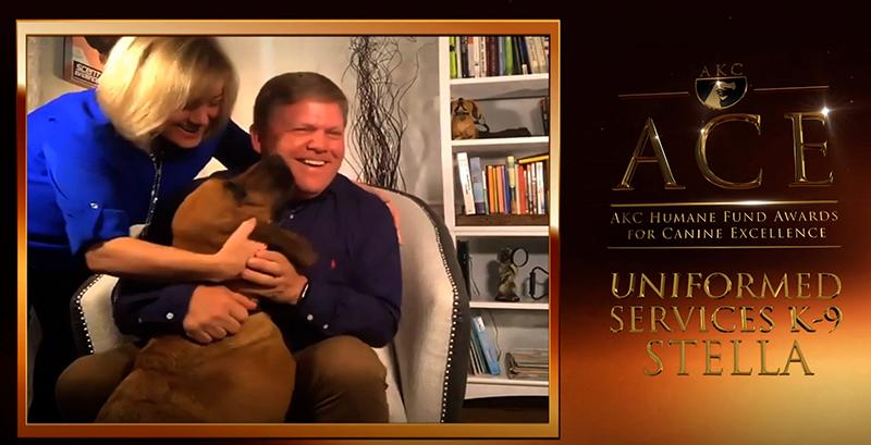 Bloodhound Stella Wins AKC Uniformed K9 Services Top Award