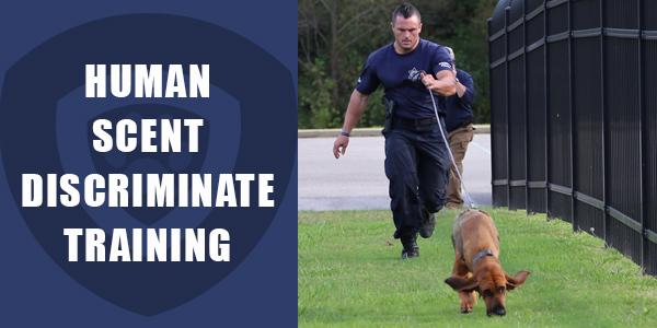 Human Scent Discriminate Training