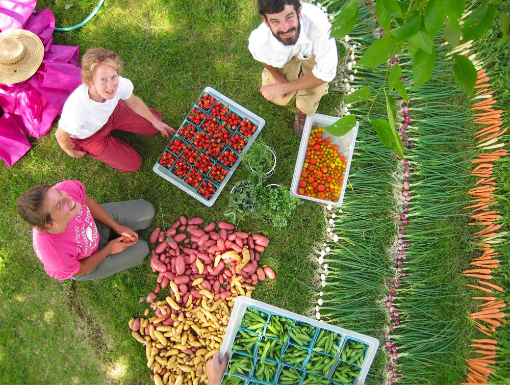 Veggies/Fruit/Herbs - fresh from Windflower Farm Bend