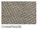Champagne Swatch