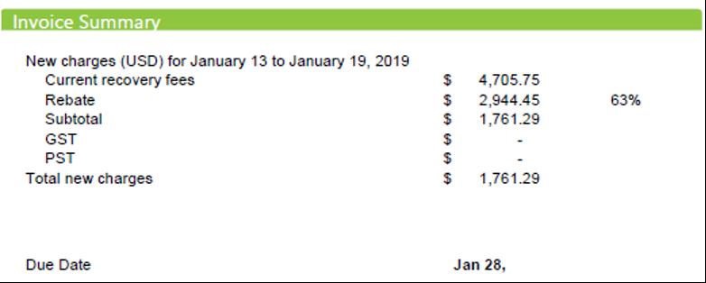 FlexPay Invoice Summary