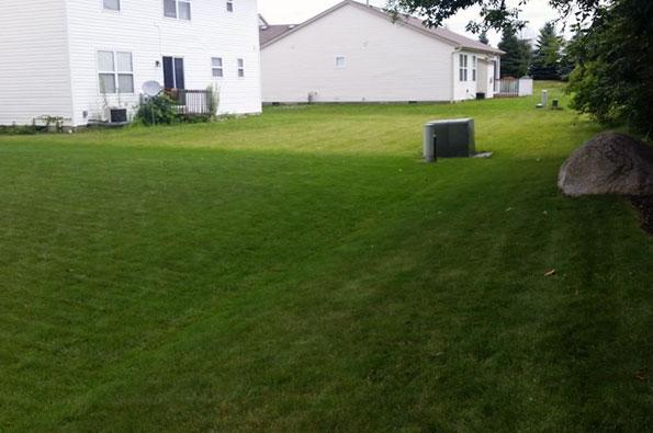 Clean Cut Lawn