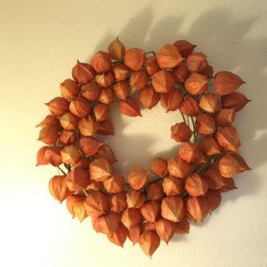 Chinese Lantern Wreath - Physalis Alkekengi