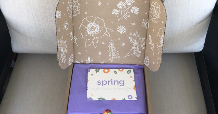Little Life Box Review Spring 2020