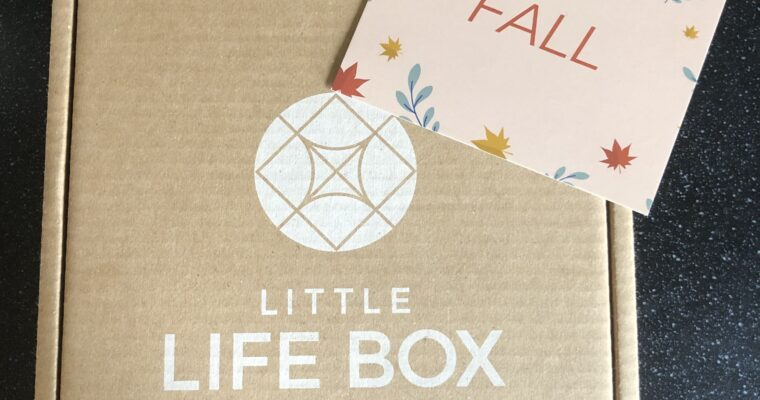 Little Life Box Review Fall 2020