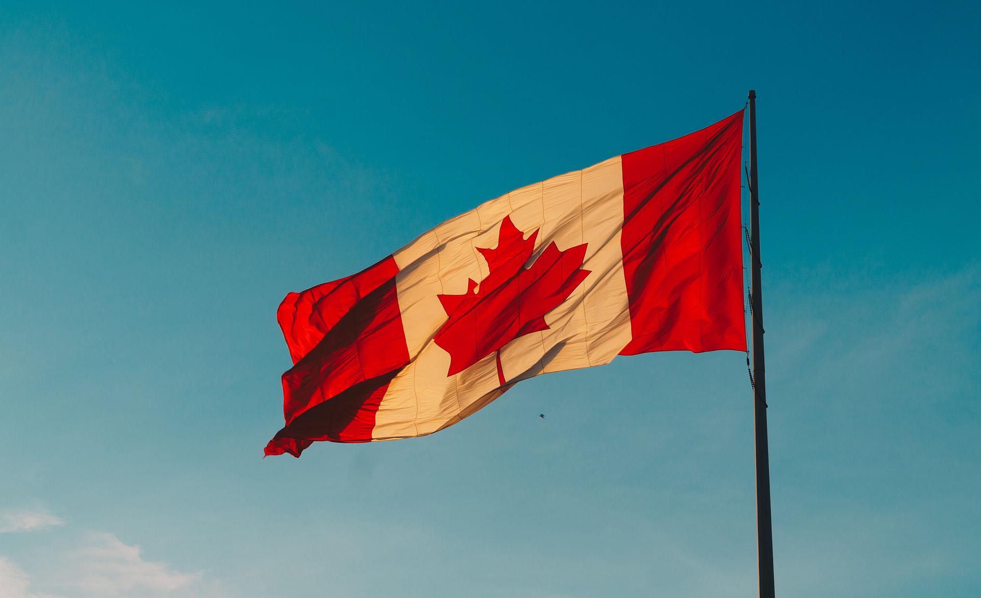 canadian healthcare focus