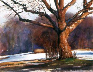 Anna B's Tree