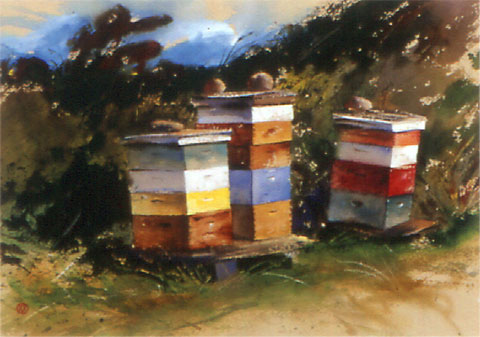 Shaker Bee Boxes
