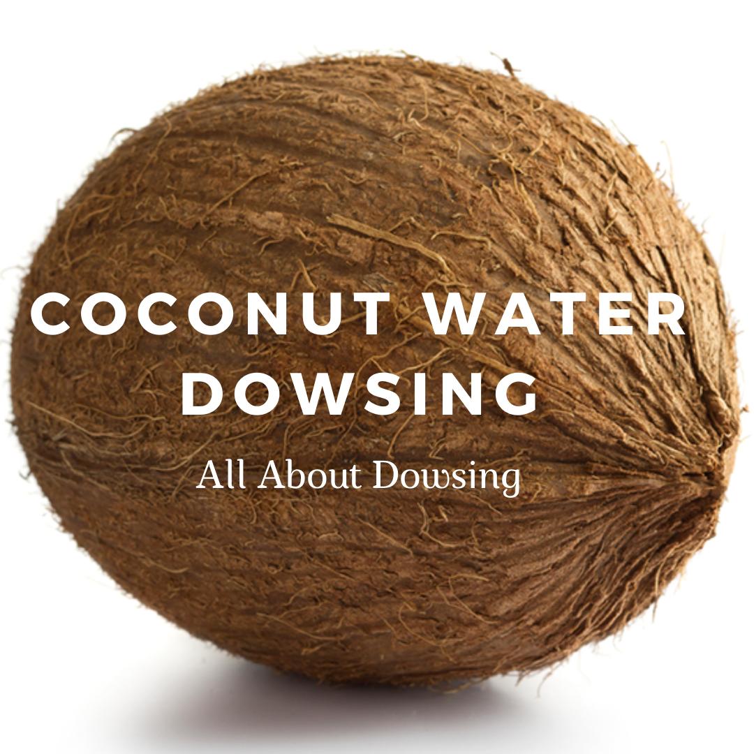coconut-method-of-dowsing-water