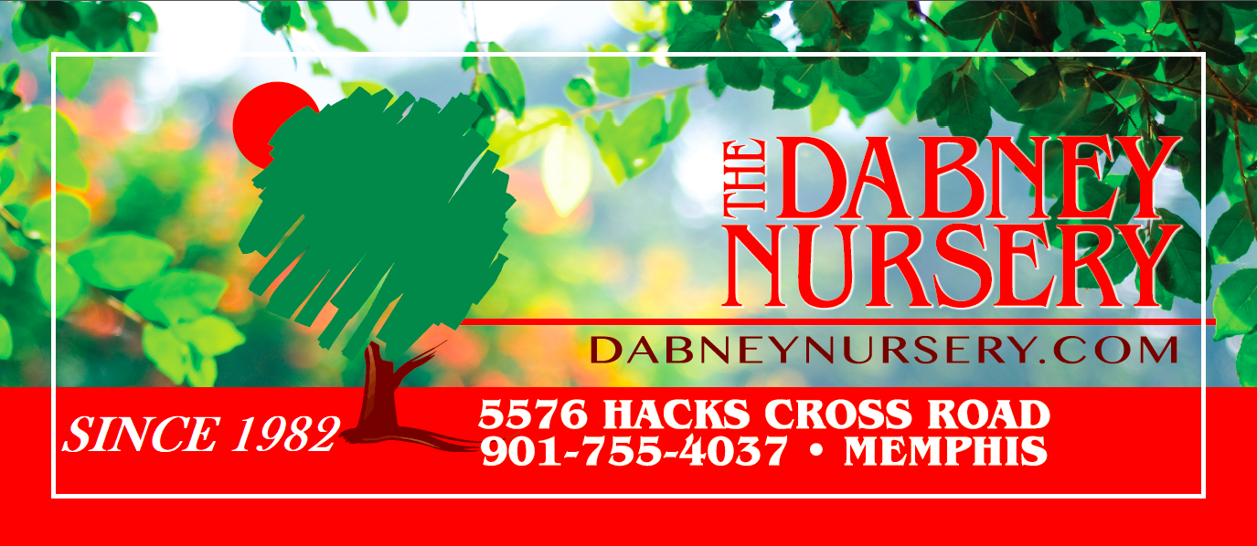 The Dabney Nursery