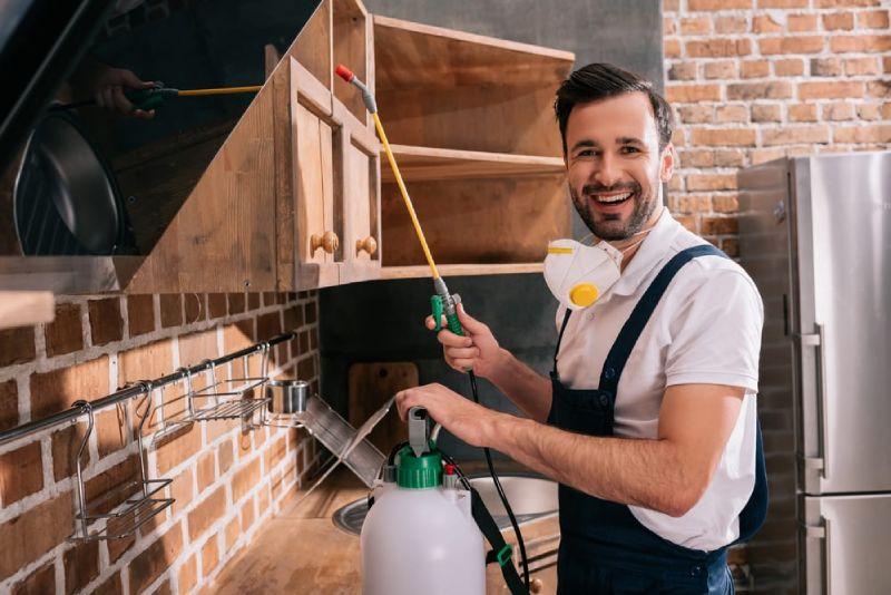 indoor outdoor spring pest control