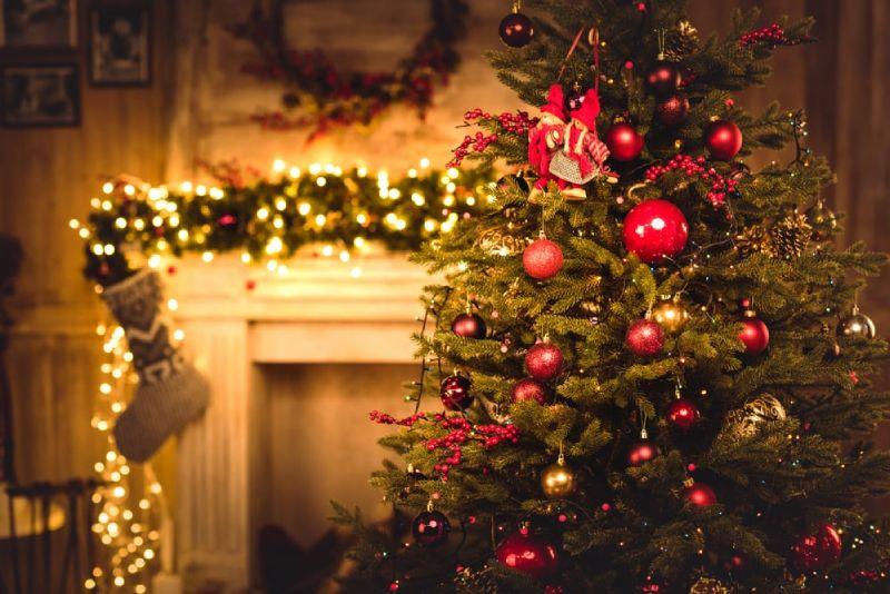 removing Christmas tree pests