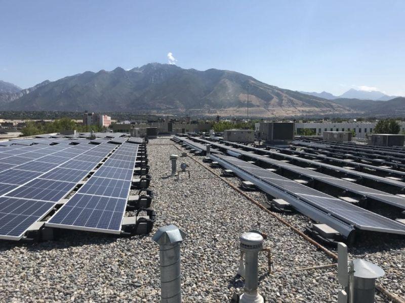 Bird Control Solar Panel