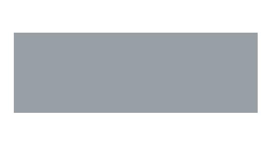 Aerial Enforcement Solutions logo