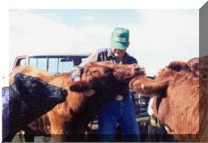 """Bobbie & our """"Wild Salers"""", summer 2000"""