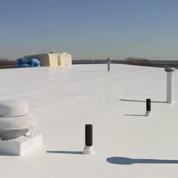 Building with TPO roof