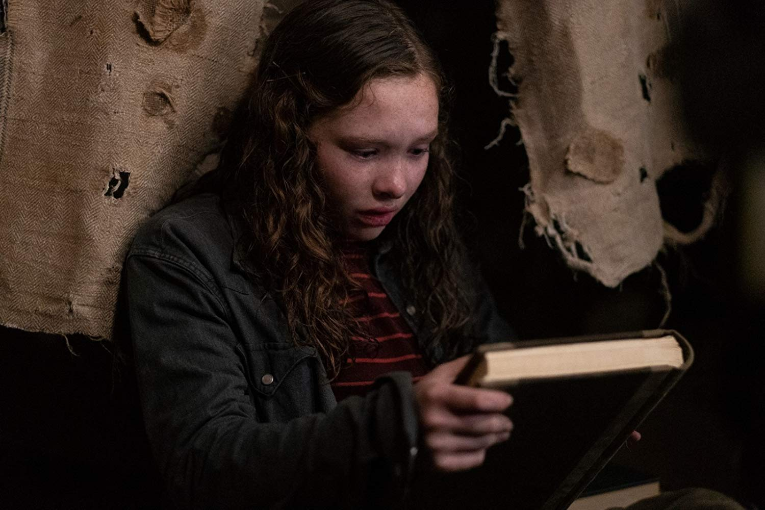 <em>Scary Stories to Tell in the Dark</em> and the Challenge of Adaptation