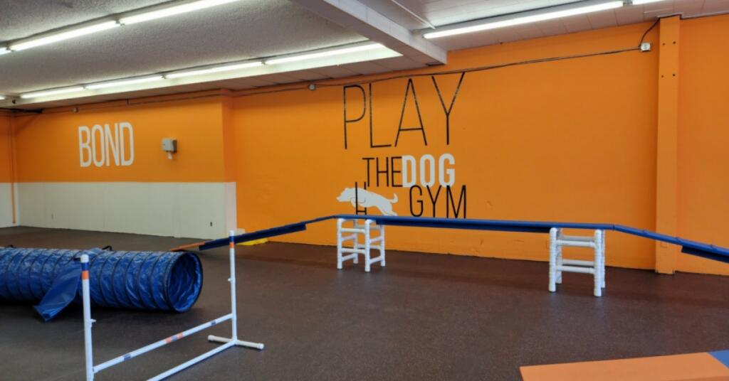 The Dog Gym