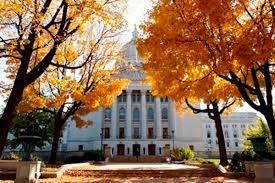Fall Capitol