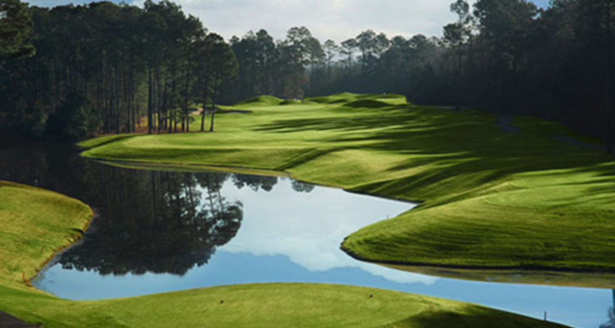 Avocet Wild Wing in Myrtle Beach Recognized By Golf Daily