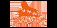 Hindu Swayamesvak Sangh USA Logo