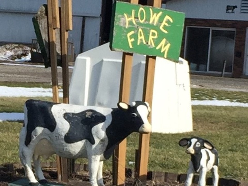 Photo with the Howe Farm sign and two fake cows
