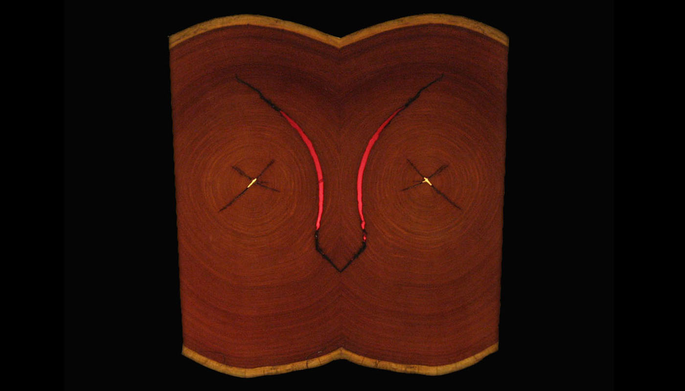 The Owl -- Rosewood and Ruby Resin -- Hanging Art