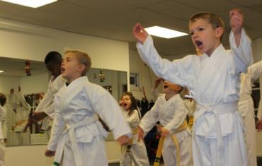Junior and Adult Karate