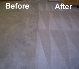 carpet-cleaning-before-after-4-262x230 logo_80h Avon Carpet Cleaning