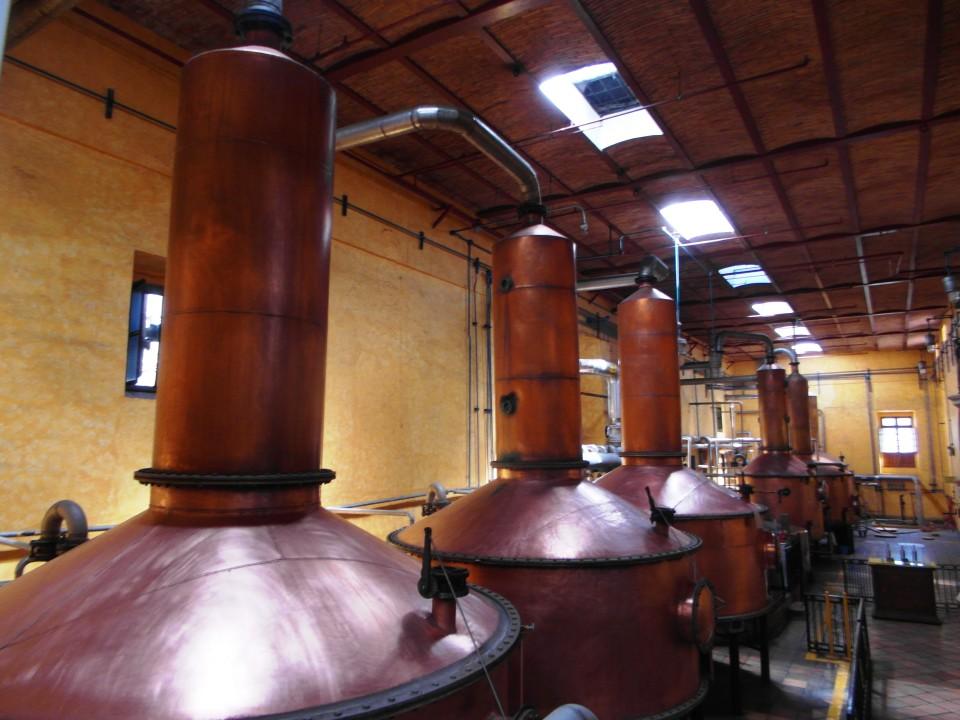 Jose Cuervo La Rojena distillery