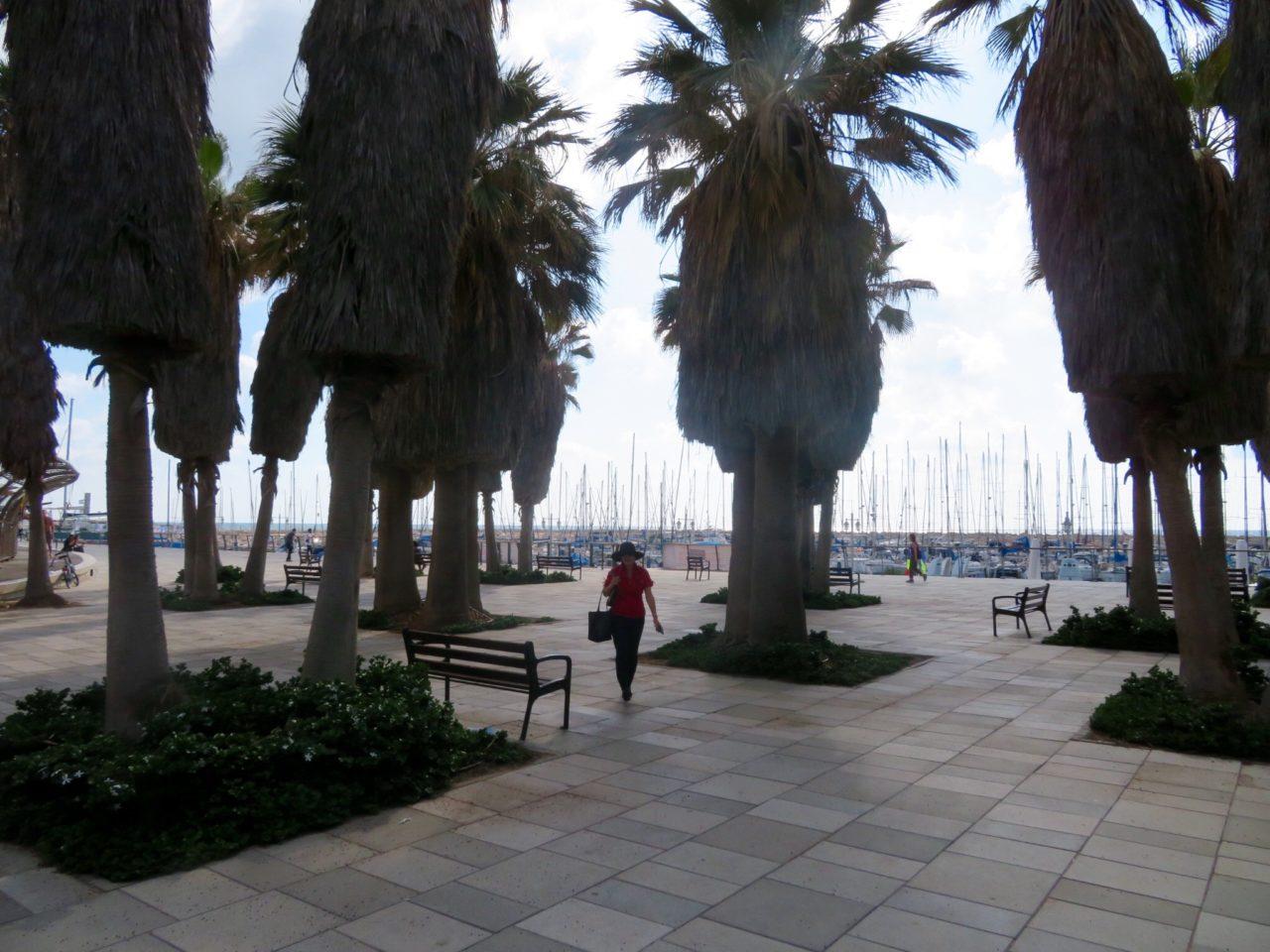 Tel Aviv Beach : Lynn walking along the gorgeous Tel Aviv Marina