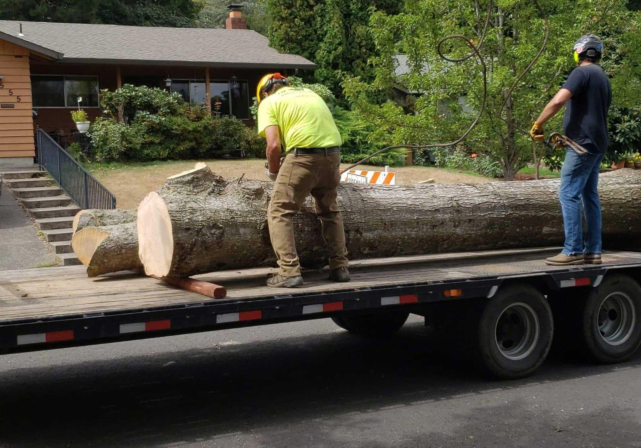 Gresham Tree Professionals