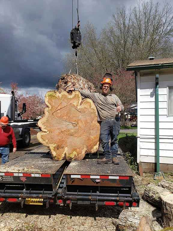 Jamal Owner of Tree Time Tree Service