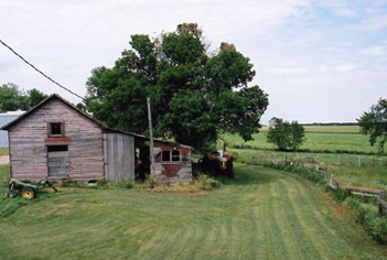 A storehouse next to a tree