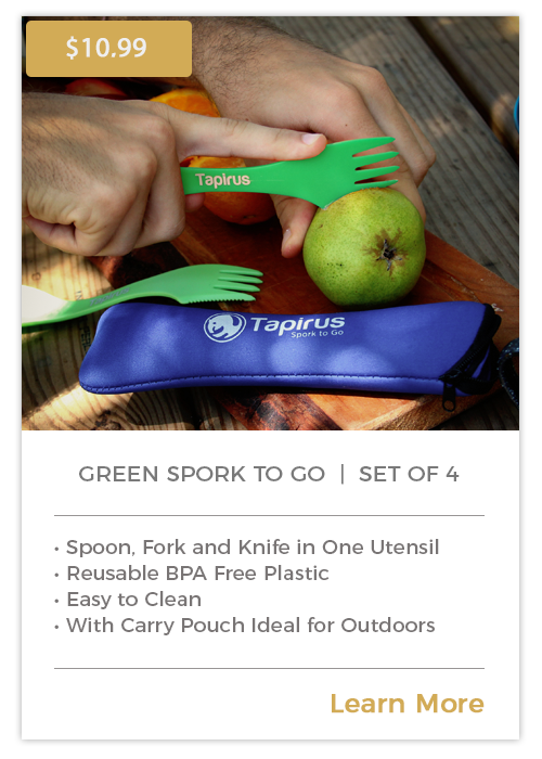 Spork To Go | Green