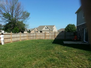 Before Guy Painting Fence Staining