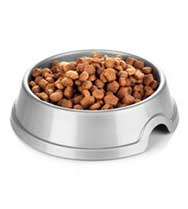Buy Dog Food Online | Fur Pet Care