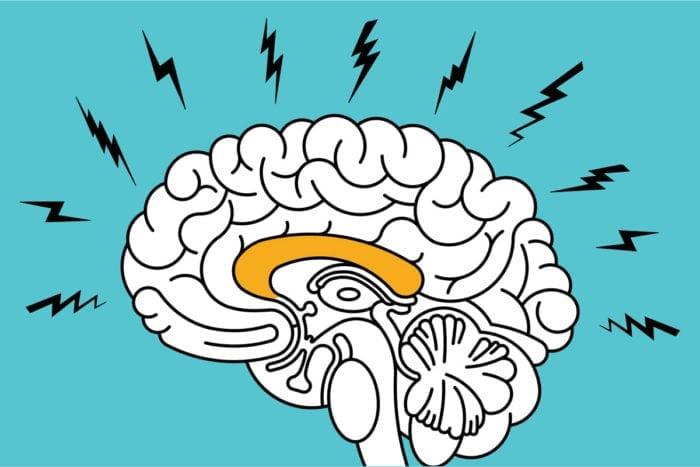Dr John's Remedies | Anxiety Natural Stress Relief Cbd Hemp Oil