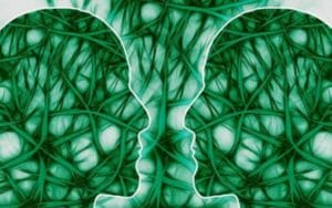 endocannabinoid system dr johns remedies hemp oil cbd hemp plant cb1 cb2 receptors