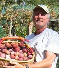 Growing Fruit Organically in WNC