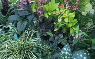 Digging Deeper into Gardening