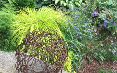 Garden Tour of Joel Cole's Garden