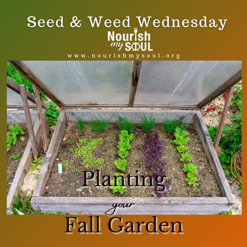Seed & Weed Fall Planting